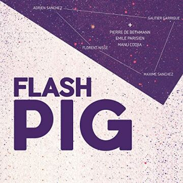 Flash Pig cover